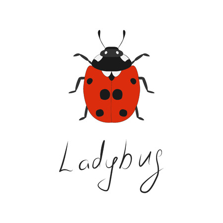 Ladybug icon. Lettering. Hand-drawn insect. Red in a black spot. Flat design. Vector illustration. Illustration