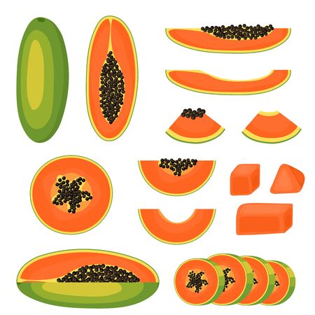 Papaya set. Slice, piece, half and a whole fruit close-up. Ripe juicy fruit. Healthy food and diet. Isolated on white background. Vector illustration.