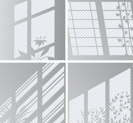 Set the overlay shadow effects. Shadow and light from the window and plants. Reflection of light on the wall. Transparent shades for your design. Vector illustration.