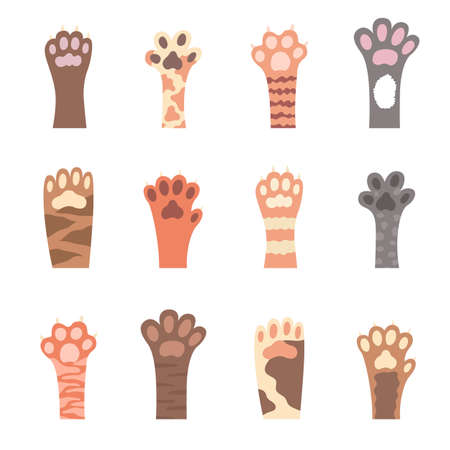 Cat foot. Hand drawn paws. Set of different colored paw prints. Vector illustration. Ilustrace