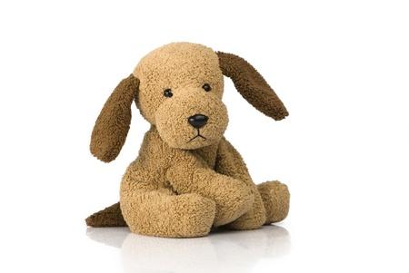 brinquedo: Brinquedo bonito do filhote de cachorro filmado em branco