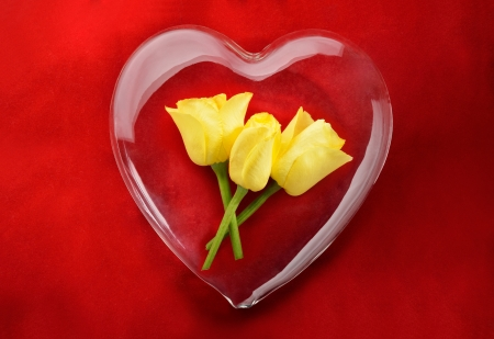 Yellow roses inside glass heart with red background photo