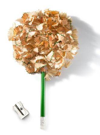 sacapuntas: Un árbol hecho de un lápiz y virutas de lápiz