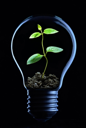 Light bulb on black background with copy text photo