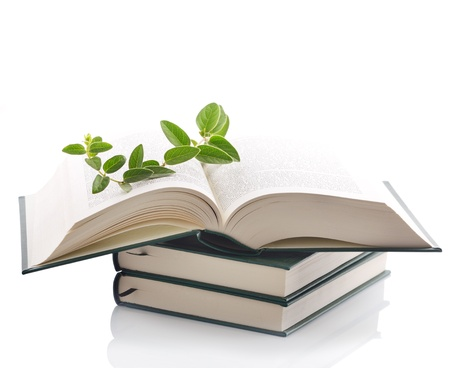 herbal knowledge: Plant growing out of open book