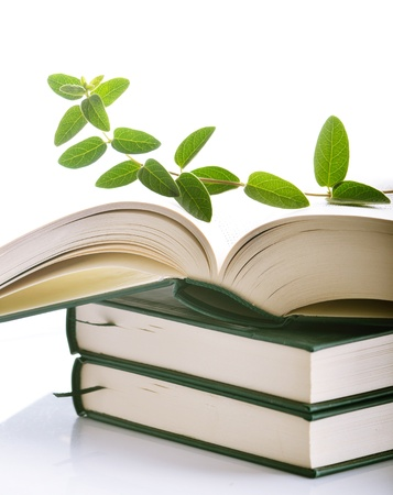 environmental issue: Plant growing out of open book