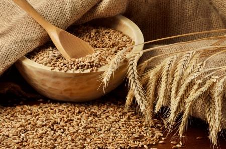 cebada: Escena rural con granos y espigas de trigo