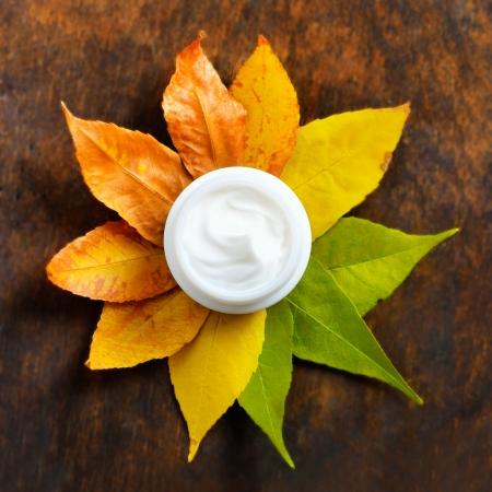 Crema anti-et� su uno sfondo di foglie verdi e secche