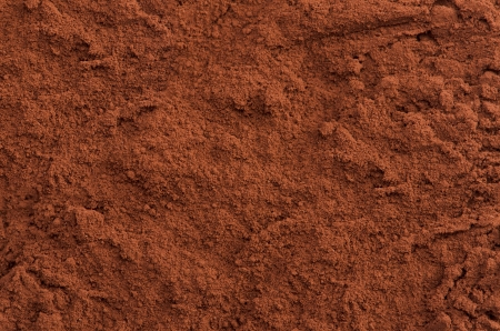 Cocoa powder top close-up background Stock Photo - 21524564