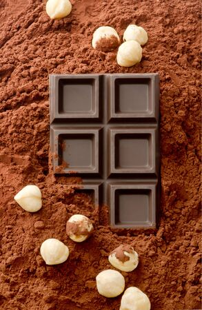 ground nuts: Hazelnuts and chocolate on cocoa background
