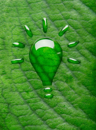 creative strength: Green energy concept  Light bulb made of water droplets