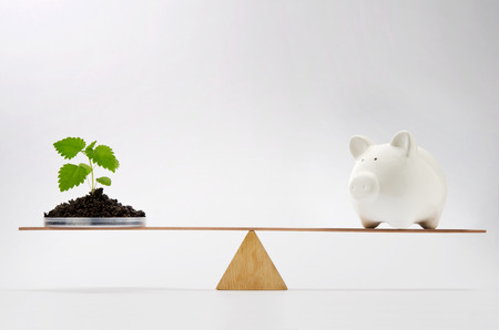Young growing plant balancing on seesaw over a piggy bank