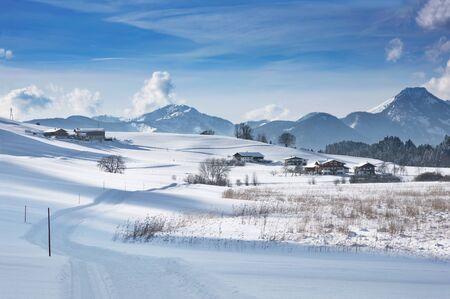 Ski tracks in the snow covered landscape photo