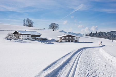 Ski tracks in the snow covered landscape Фото со стока