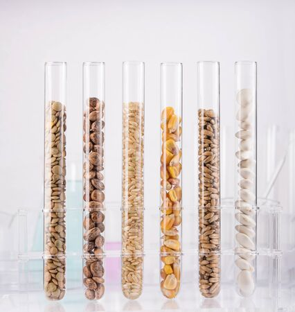 Genetically modified seeds. Test tubes filled with seeds photo
