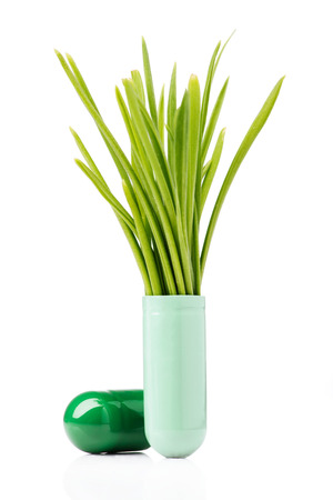 test tube holder: Capsule containing wheat grass