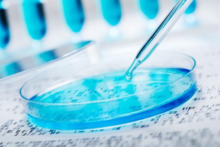 バック グラウンドで DNA ゲルをペトリ皿に戻される DNA のサンプル