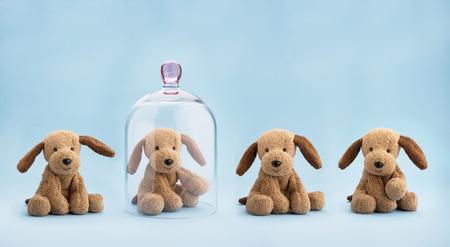 青の背景にガラスのドームの下で保護された子犬グッズ 写真素材
