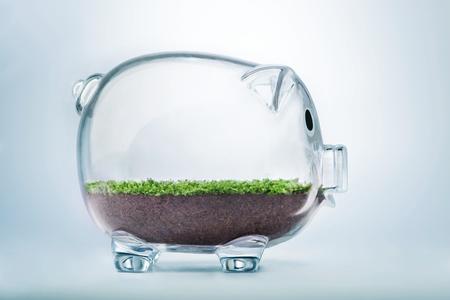 草透明な貯金箱内部成長と繁栄の概念 写真素材