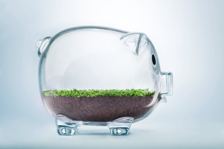 Prosperity concept with grass growing inside transparent piggy bank