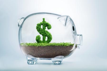 米ドルの形で成長する草で貯金節約のコンセプト 写真素材