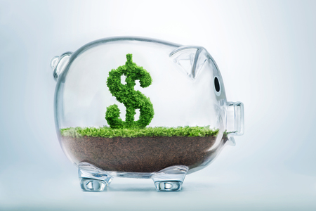 Piggy bank savings concept with grass growing in shape of US dollar Archivio Fotografico