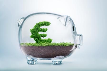 Koncepcja oszczędności Piggy Bank z trawy rosnące w kształcie znak euro