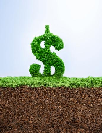signo pesos: concepto de éxito de la inversión con la hierba Dólar símbolo de la forma