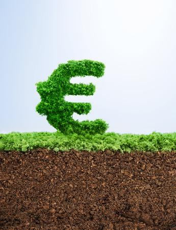 잔디 유로 기호 모양 성공적인 투자 개념