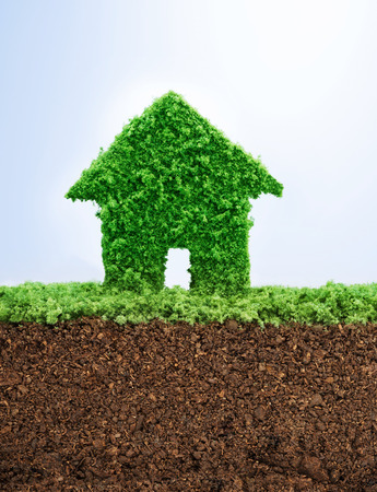 Environmentally friendly living concept with grass in shape of a house