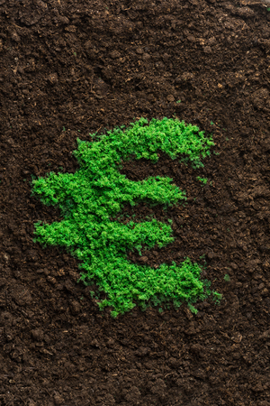 european money: Successful investment concept with grass Euro symbol shape