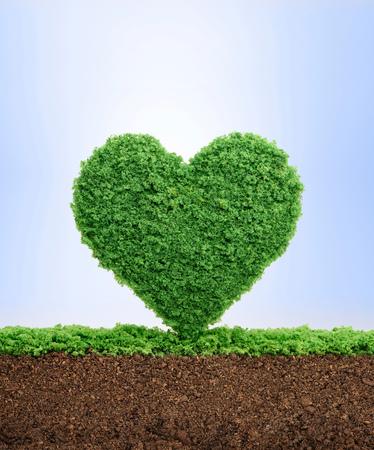 Aime le concept de la nature, avec l'herbe qui pousse en forme de coeur, symbolisant la nécessité de protéger l'environnement et de renouer avec la nature. Banque d'images