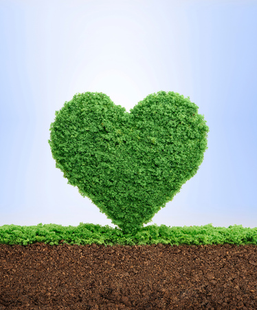 Love nature concept, with grass growing in the shape of a heart, symbolising the need to protect the environment and reconnect with nature.
