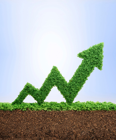 Grass growing in the shape of an arrow graph, symbolising the care and dedication needed for progress, success and profit in business.
