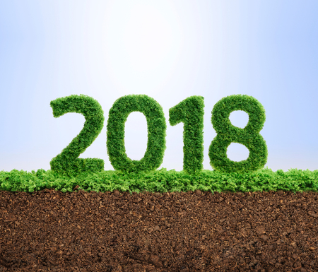 2018 is a good year for growth in environmental business. Grass growing in the shape of year 2108. Archivio Fotografico