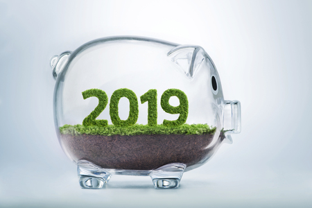 2019 is a good year for business. Grass growing in the shape of year 2019, inside a transparent piggy bank. Stock Photo