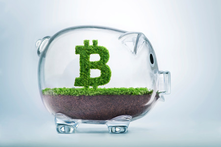 Grass growing in the shape of the Bitcoin currency symbol, inside a transparent piggy bank.