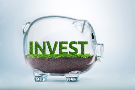 Grass growing in the shape of the word invest, inside a transparent piggy bank.