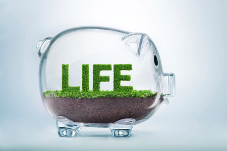 Grass growing in the shape of the word life, inside a transparent piggy bank.