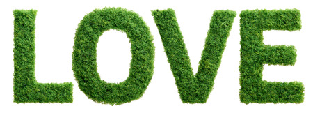 Grass growing in the shape of the word love isolated.