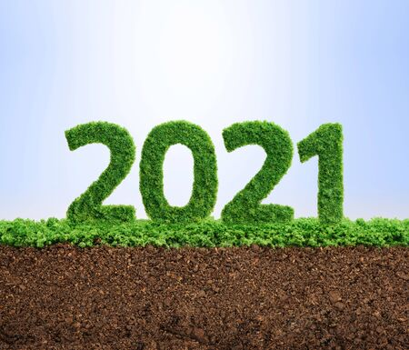 2021 is a good year for growth in environmental business. Grass growing in the shape of year 2021. 스톡 콘텐츠
