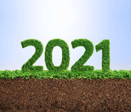 Il 2021 è un buon anno per la crescita del business ambientale. Erba che cresce a forma di anno 2021.