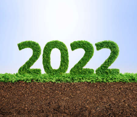 2022 is a good year for growth in environmental business. Grass growing in the shape of year 2022. Фото со стока