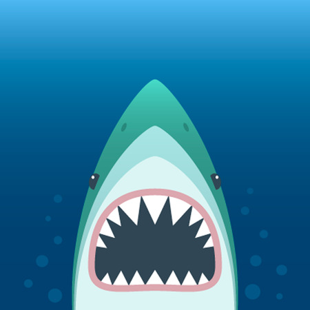 Shark with open mouth. Shark isolation on a blue background. Shark Face with teeth and jaw.