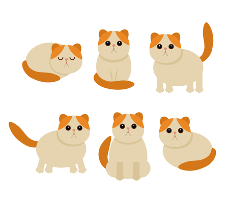 Funny characters of cats in different poses. flat vector illustration, isolated on a light background