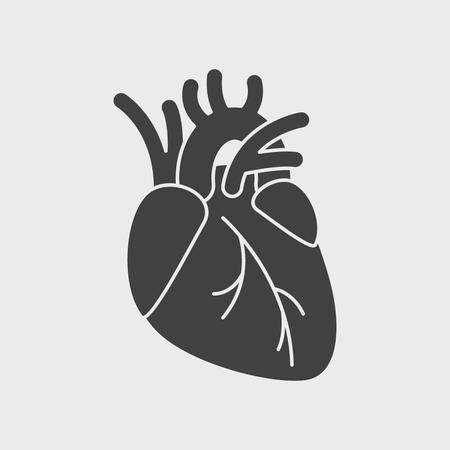 Human heart anatomy. Heart medical science vector illustration. flat vector icon isolated Illustration