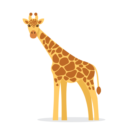 Giraffe in a cartoon style, is insulated on white background.