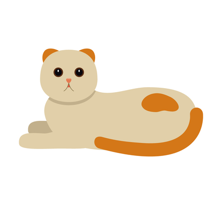 Funny cat lies on the floor. Flat vector is insulated Illustration