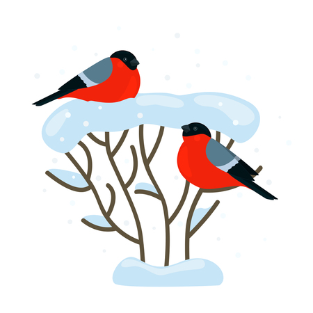 christmas greeting card: A pair of bullfinches are sitting on a sno Illustration