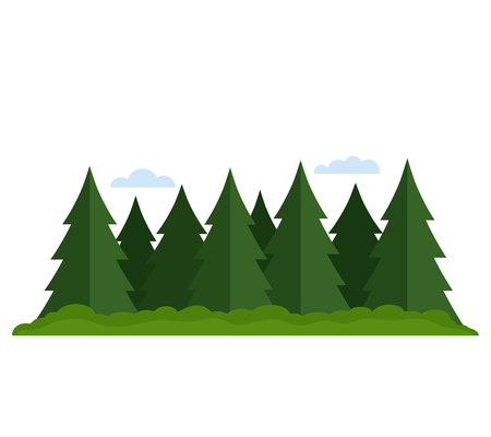 Coniferous forest mixed with deciduous forest. black and white background Illustration